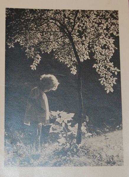 Kartka dla siostry Haliny od Eugenii Krall.
